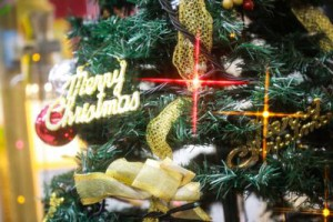 christmas0I9A4358